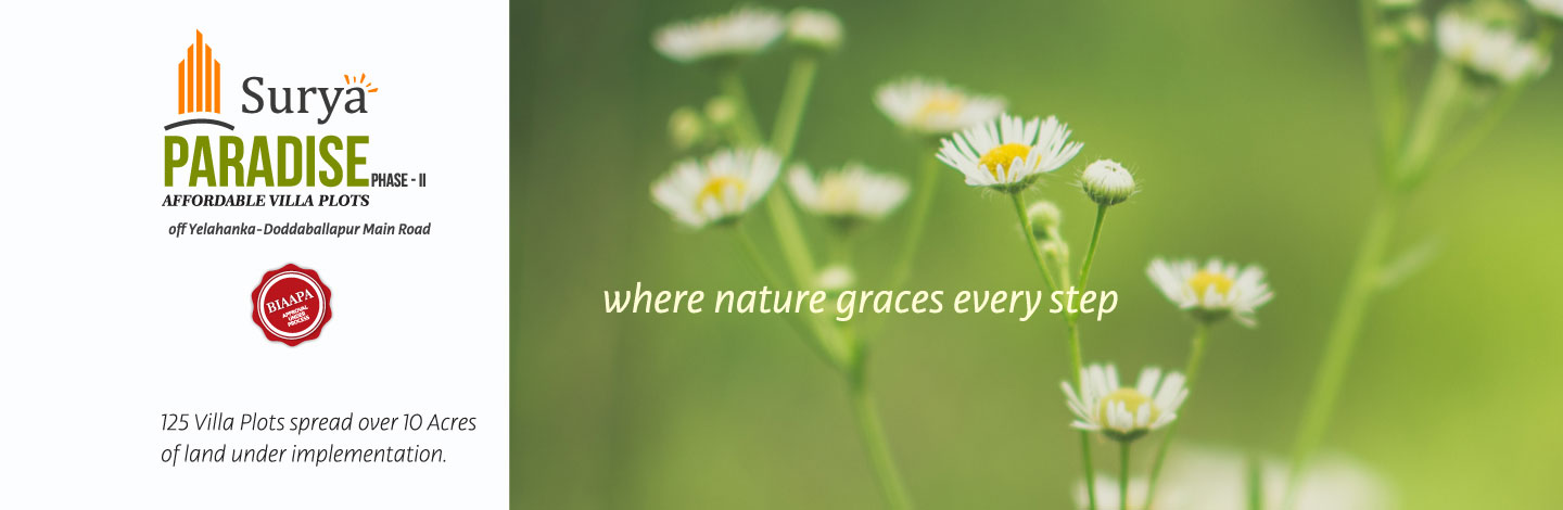 Where Natures Graces Every Step